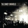 The Dandy Warhols - Bohemian Like You  Live