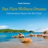 Pan Flute Wellness Dreams: Harmonious Music for Pan Flute, Frank Metzner