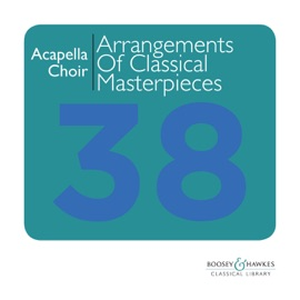 Suite Bergamasque L 75 Iii Clair De Lune Arranged For Acapella Choir