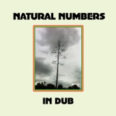 Natural Numbers - One Duppy, Two Duppy, Three Duppy