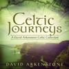 Celtic Journeys A David Arkenstone Celtic Collection