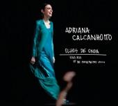 Adriana Calcanhotto - Esquadros (Ao Vivo)