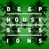 Deep House Sessions (2014)
