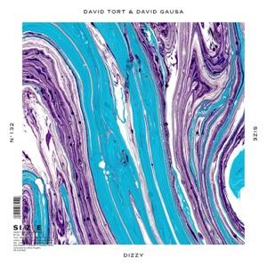 David Tort & David Gausa - Dizzy