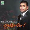 Hits of A.R.Rahman Nenjame - A. R. Rahman