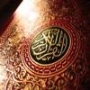 تفسير القرآن الكريم (محمد متولي الشعراوي)