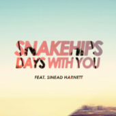 Days With You (feat. Sinead Harnett)