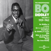 Bo diddley - You Can't Judge a Book By Looking At the Corner