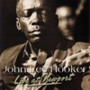 Live At Newport, John Lee Hooker