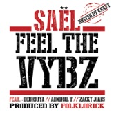 Feel the Vybz (feat. Debrouya, Admiral T & Zacky Joans) [Hosted By Krazy] - Single