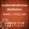 Guided Mindfulness Meditation - Daniel J. Siegel, MD