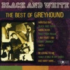 Black and White: The Best of Greyhound - Various Artists