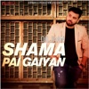 Shama Pai Gaiyan - Single - Diljaan