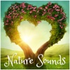 Love Nature Sounds - Calmsound & Nature Sounds