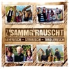 Z'sammg'rauscht / bayerisch - steirisch - tirolerisch - Various Artists