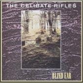 The Celibate Rifles - Johnny