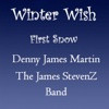 Winter Wish / First Snow - Single - Denny James Martin & James Stevenz Band
