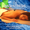 Mindfulness Meditation Music Spa Maestro - Mental Peace artwork