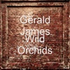 Wild Orchids - Single - Gerald James