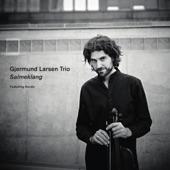 Gjermund Larsen Trio - Vals assai