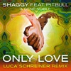Only Love (feat. Pitbull & Gene Noble) [Luca Schreiner Island House Mix] - Single, Shaggy