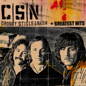 Crosby, Stills & Nash - Long Time Gone