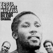 In The Dark-Toots & The Maytals