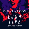 Lush Life (feat. Tinie Tempah) [Remixes] - Single ジャケット写真