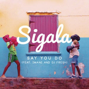 Say You Do (feat. Imani & DJ Fresh) [Radio Edit] - Single Mp3 Download
