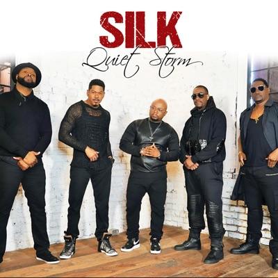 Quiet Storm - Silk