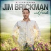 Jim Brickman Friends