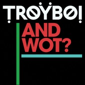 TroyBoi - And Wot?