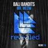 Mr. Meow (Extended Mix)