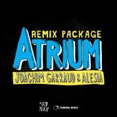 Atrium Remix Package - EP