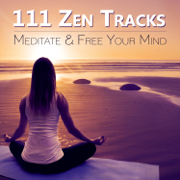 111 Zen Tracks: Meditate & Free Your Mind, Relaxing Sounds to Keep Calm, Music to Treatment of Insomnia and Anxiety - Zen Meditation Music Academy - Zen Meditation Music Academy