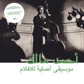 Ahmed Malek - La silence des cendres