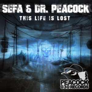 Dr. Peacock & Sefa - This Life Is Lost
