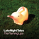 The Flaming Lips - Late Night Tales: The Flaming Lips
