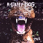 A Giant Dog - Not a Miracle