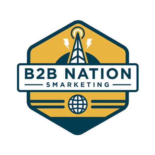 Cover image of B2B Nation
