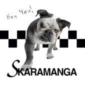 Skaramanga - Life Got a Plan in You