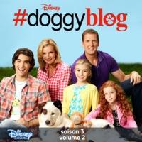 Télécharger #doggyblog, Saison 3 - Volume 2 Episode 1