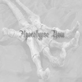 apocalypse now opening scene song