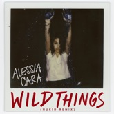 Wild Things (NuKid Remix) - Single