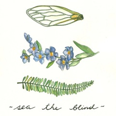 Sea the Blind - EP