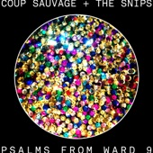 Coup Sauvage & the Snips - Requiem for a Mountaintop