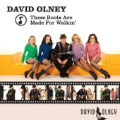 David Olney - These Boots Are Made for Walkin'