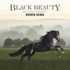 Denis King - Black Beauty artwork