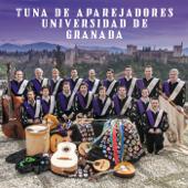 Tuna de Arquitectura Técnica de Granada
