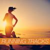 Running Tracks - Various Artists